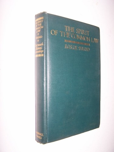 Image for The Spirit of the Common Law