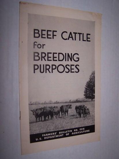 Image for BEEF CATTLE FOR BREEDING PURPOSES