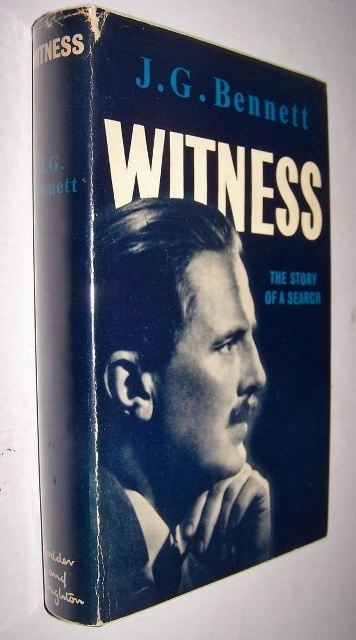 Image for WITNESS - The Story of a Search